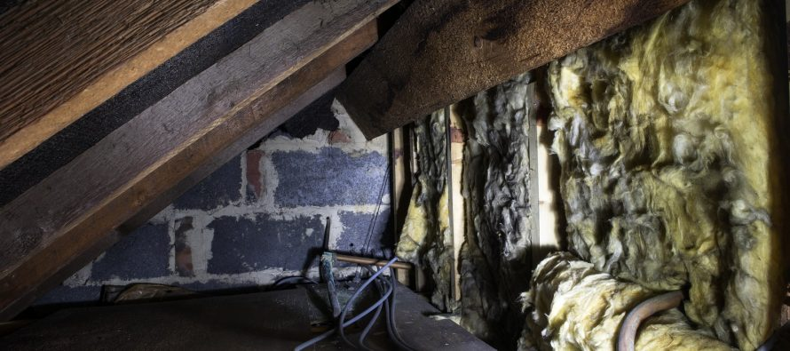 how to prevent mould in crawl space