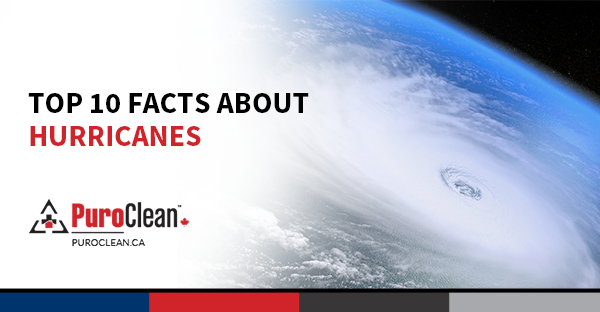 Top 10 Facts About Hurricanes - PuroClean Canada HQ