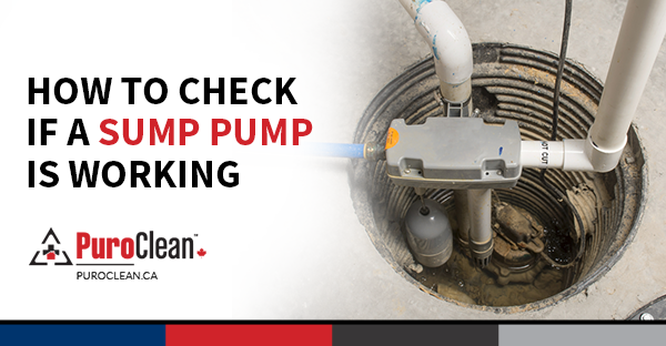 How to Check If a Sump Pump Is Working - PuroClean Canada HQ